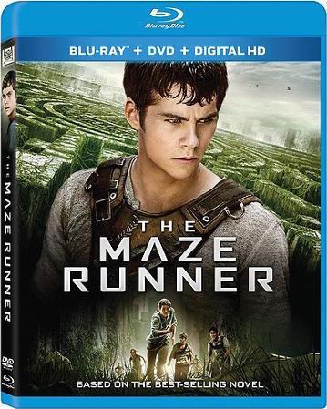 The Maze Runner 2014 Dual Audio In Hindi English 720p BluRay
