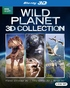 BBC Earth Wild Planet 3D Gift Set: Planet Dinosaurs / Tiny Giants / Winged Planet (Blu-ray)