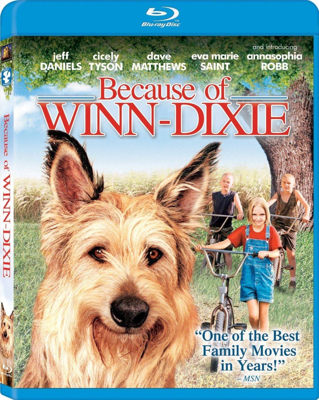 Resultado de imagem para Because of Winn-Dixie bluray