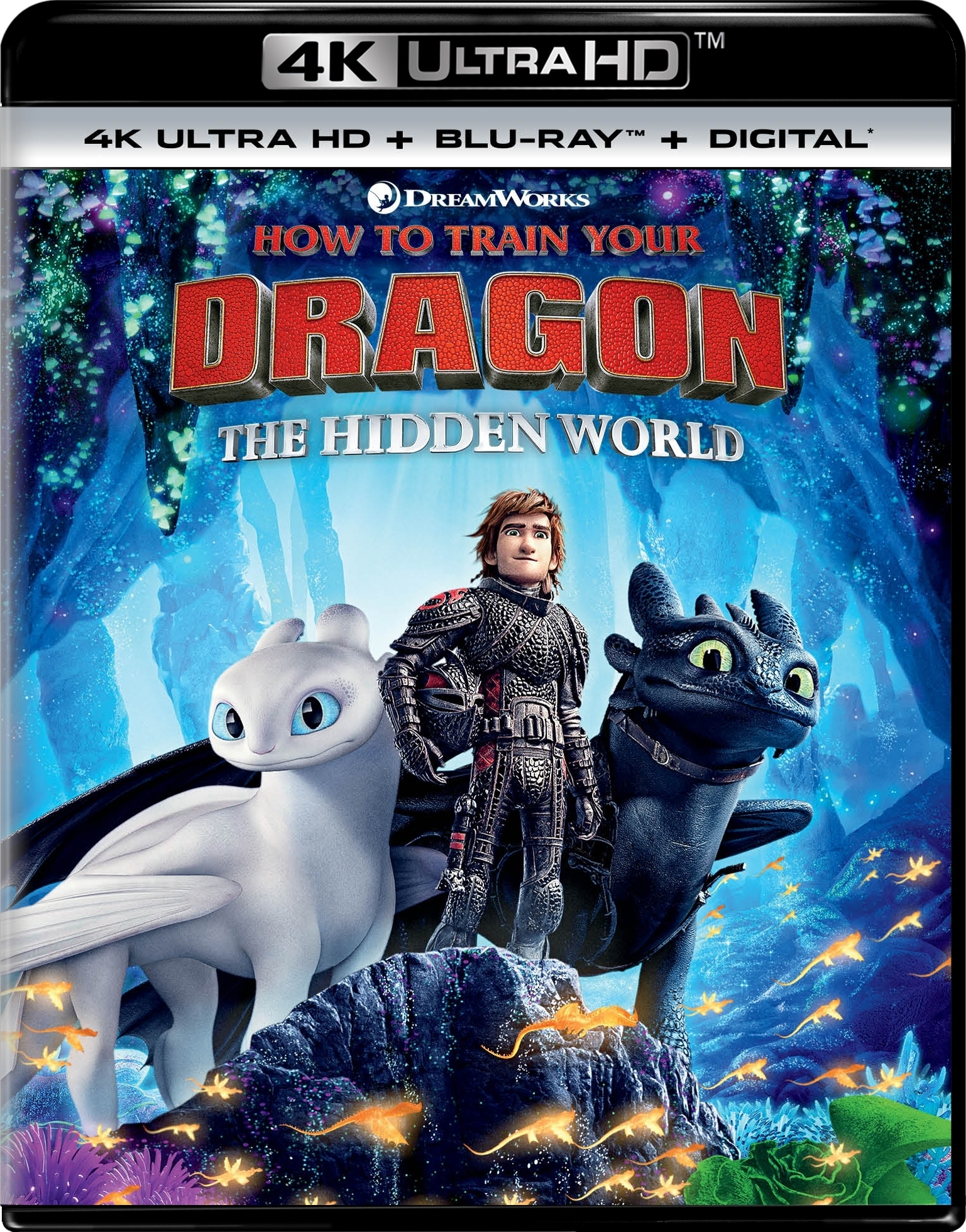 Download How to Train Your Dragon - The Hidden World (2019) 2160p HDR 10bi Torrent
