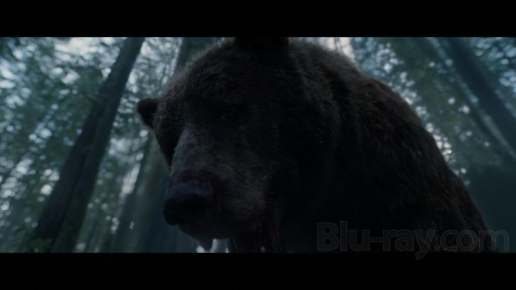 The Revenant 4K Blu-ray