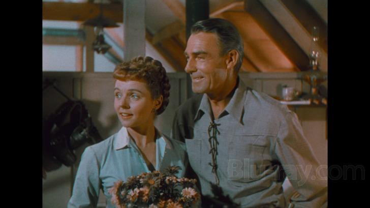 Amore selvaggio (1949) HD