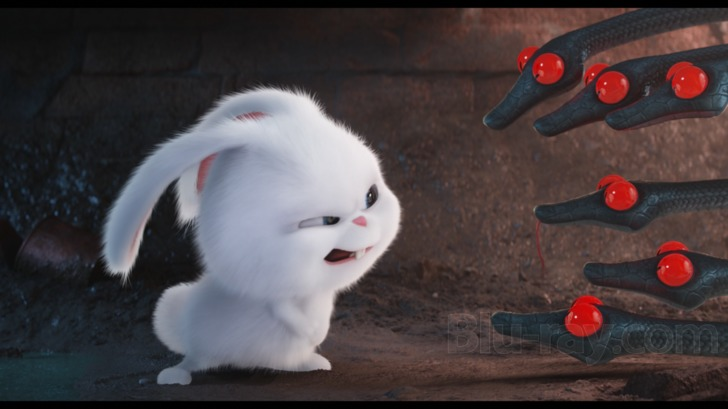 The Secret Life Of Pets Blu Ray