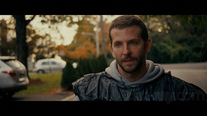 silver linings playbook download dual audio